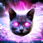 laser space cat by funky catzerz
