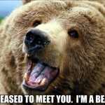 pleased to meet you i'm a bear