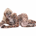 snow leopard body paint SM_thumb