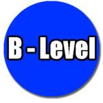 skating skill levels BLUE B